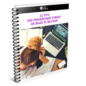 E-book tips tegen ongewenste stress